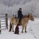turistka na koni